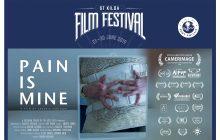 PAIN IS MINE کاندید دو جایزه از جشنواره سنت کیلدا استرالیا