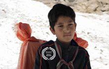 فیلم کوتاه «کوه» به جشنواره Green Mountain امریکا راه یافت