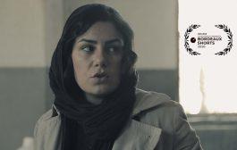 جایزه بهترین فیلم تجربی جشنواره بوردو برای بالین