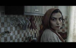 بهترین فیلم کوتاه جشنواره ی جهانی